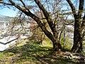 1 Chome Minato, Okaya-shi, Nagano-ken 394-0044, Japan - panoramio (15).jpg
