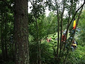2007 Rally Finland shakedown 02.JPG