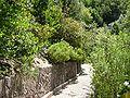 2008 07 Botanical Garden Meran 70580R0196.jpg