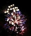2010 07 14 bastille day fireworks 046 (4839483722).jpg
