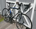 2012 Trek 1.1 Road Bike.jpg