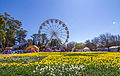 2015-09-18 Floriade Canberra 2015 - 2.jpg