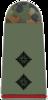 221-Oberleutnant