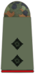 221-Oberleutnant.png