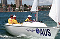 231000 - Sailing sonar Jamie Dunross Noel Robins Graeme Martin action 4 - 3b - 2000 Sydney race photo.jpg