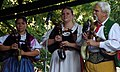 26.8.15 A Musical Day in Ceske Budejovice 261 (20912072035).jpg