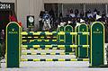 54eme CHI de Genève - 20141213 - Coupe de Genève - Christian Ahlmann et Aragon 1.jpg