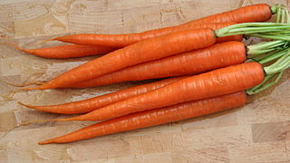 Are Carrots The Secret To Healthy Sperm?