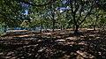 83630 Les Salles-sur-Verdon, France - panoramio (1).jpg