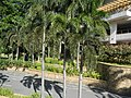 9912Makati Central Business District Ayala Greenbelt Landmarks 43.jpg