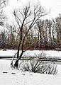 9 Русанівський пролив взимку.jpg