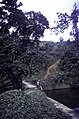 ASC Leiden - F. van der Kraaij Collection - 13 - 030 - The Firestone rubber plantation. A dam for hydro energy surrounded by bushes - Harbel, Montserrado county, Liberia - 1976.jpg