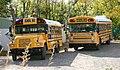 AZschoolbuses.jpg