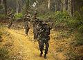 A Jungle Classroom, Hawaii based Marines train with Malaysian Army soldiers 120617-M-CS947-009.jpg