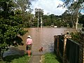 A flooded street in the Brisbane suburb of Kenmore.jpg