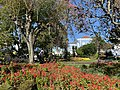A perfect sunny day, Jardim Padre Sena Freitas, Ponta Delgada, São Miguel, Azores (Açores) Archipelago, Portugal (49043741112).jpg