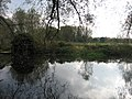 A still River Cam - late autumn, late afternoon - geograph.org.uk - 1049501.jpg