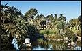 Abbey Park & Gardens Torquay (12114346026).jpg