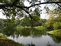 Acharya Jagadish Chandra Bose Indian Botanic Garden - Howrah 2011-03-20 2037.JPG