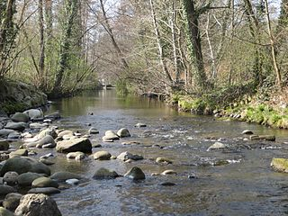 Acher river in Germany