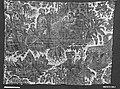 Adoration of the Magi MET 18870.jpg