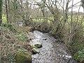 Afon Rhyd below Felinwnda Bridge - geograph.org.uk - 729651.jpg