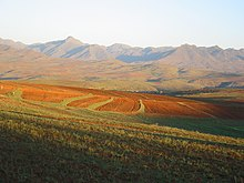 African landscape.jpg