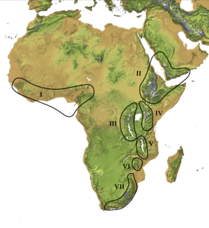 Afromontane - Afromontane Zones. I. West African and Cameroon highlands, II. Ethiopian and Arabian highlands, III. Western (Albertine) Rift, IV. Eastern Rift. V. Southern Rift, VI. Eastern Highlands, VII. Drakensberg