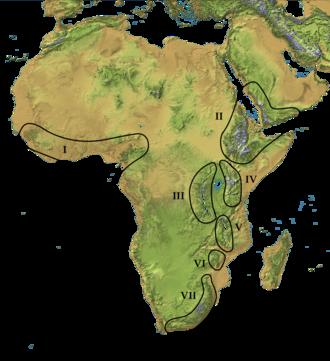 Afromontane - Afromontane Zones. I. West African and Cameroon highlands, II. Ethiopian and Arabian highlands, III. Western (Albertine) Rift, IV. Eastern Rift. V. Southern Rift, VI. Eastern Highlands, VII. Drakensberg