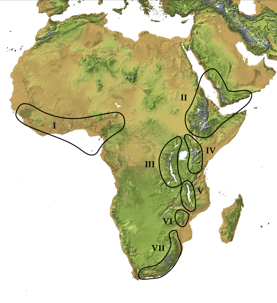 Afromontane Zones (transparent)
