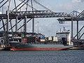 Alana (ship, 2004) IMO 9297589 Amazonehaven Port of Rotterdam pic1.JPG