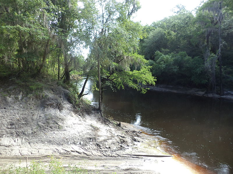 File:Alapaha River looking NB from boat ramp, Statenville.JPG