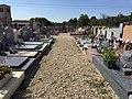 Allée du cimetière Saint-Martin.jpg