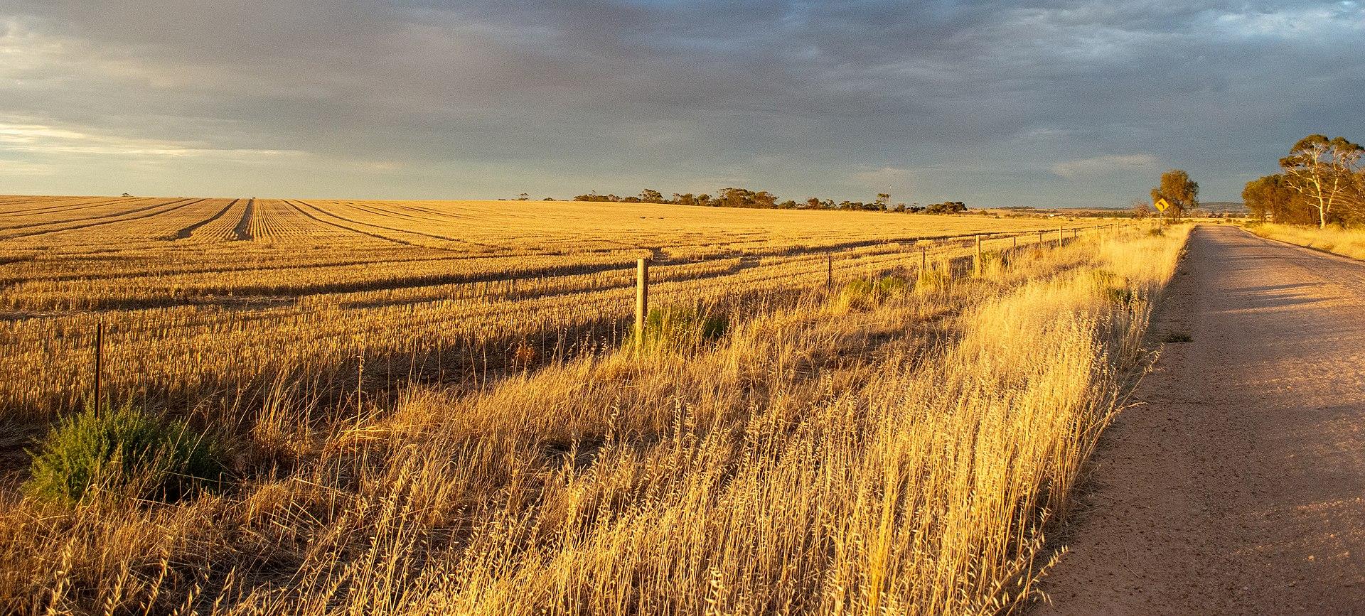 Alma farm.jpg