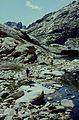 Alpes-Maritimes Saint-Martin-Vesubie Lacs Bessons - panoramio (3).jpg