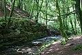 Alyth Burn, Den o' Alyth - geograph.org.uk - 1420403.jpg