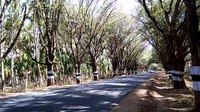 File:Anamalai road VID20180327151309.webm