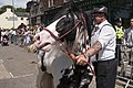 Appleby Horse Fair (8991323194).jpg