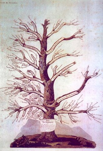 Jean-Louis-Marc Alibert - Arbre des dermatoses (Tree of Dermatoses)