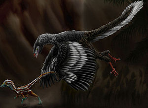 1861 in paleontology - Archaeopteryx