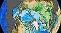 Arctic Alaska-Chukotka 50Ma.jpg