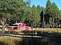 Arizona Ranch, Coconino National Forest 2015 (49644848671).jpg