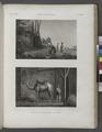 Arts et métiers. 1. La faiseuse de mottes à bruler; 2. Le chamelier (NYPL b14212718-1268845).tiff