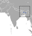 Assam Mole Shrew area.png