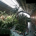 Atocha Railway Station (interior) - panoramio.jpg