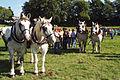 Attelage Divers mondial du cheval percheron 2011Cl J Weber09 (23787866580).jpg