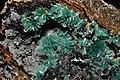 Auricalcite, hemimorphite, goethite.jpg