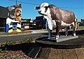 Australian Braford statue Rocky.jpg