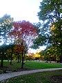 Autumn In Maple Bluff - panoramio (2).jpg