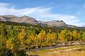 Autumn approaches (8051869068).jpg